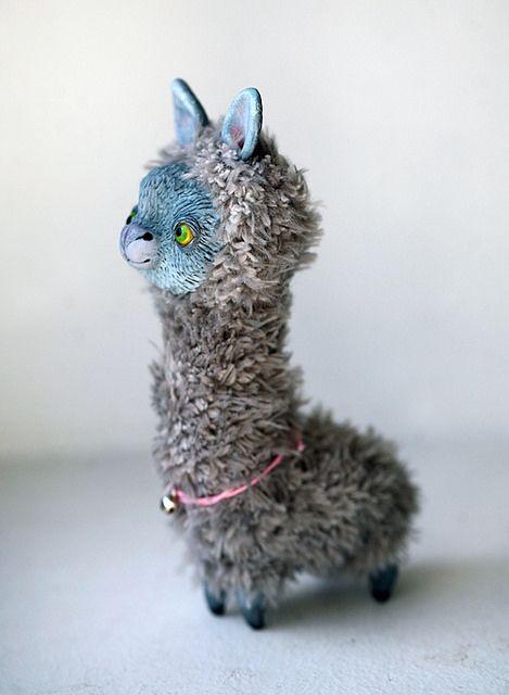 munchkin llama by oso_polar, via Flickr