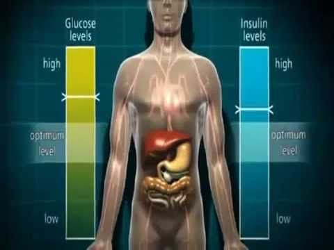 Diabetes Effects on Body In Animation 3D Explained - YouTube