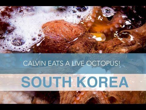 South Korea: Calvin Eats a Live Octopus!   Seek The World