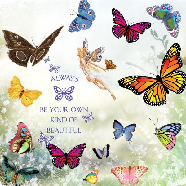 Butterfly Beautiful ʚįɞ ::
