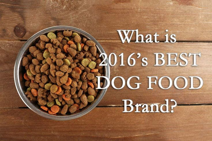 "Our editors spent many hours researching the pet food market, reading about and testing to answer the ultimate question: ""what is the best dog food brand?"" After many days of work, we've come up with a list of top 10 dog foods with picks for the best dry dog food, canned dog food, best puppy food brand, organic and holistic dog foods."