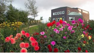Nolde Stiftung Seebüll, Schleswig - the collection of Emil Nolde