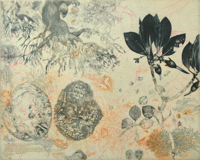 Jorg Schmeisser - Mangroves & notes - 2010, etching, edition 41 of 80, 49.5 x 61.5cm