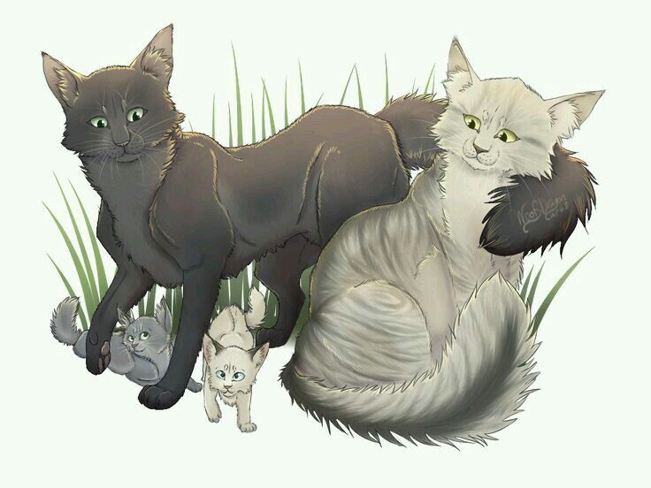 Warrior Cats Longtail X Reader Lemon