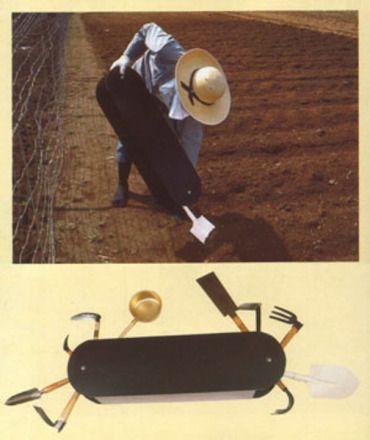 392 Best Old Images On Pinterest Vintage Photos
