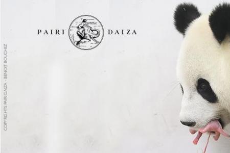 Belgique - Un bébé panda géant est né dans la nuit de mercredi à jeudi à Pairi Daiza, indiquent jeudi matin le parc et le China Conservation and Research Center for the Giant Panda