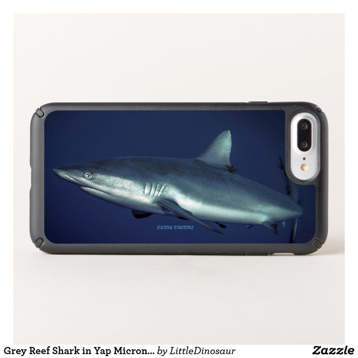 Grey Reef Shark in Yap Micronesia Speck iPhone Case