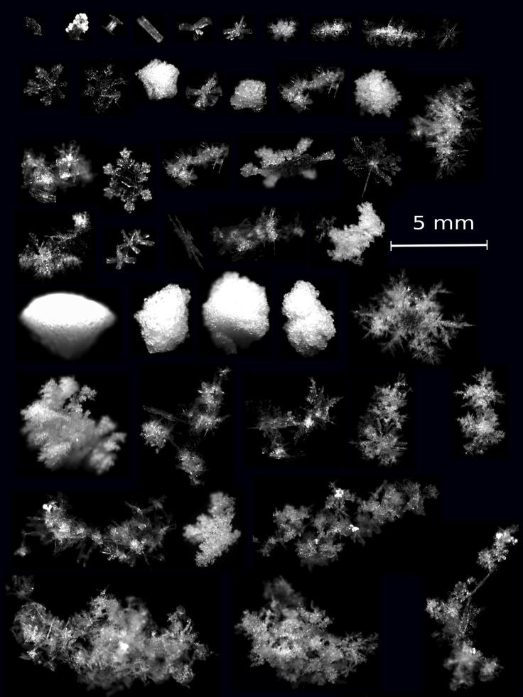 Cómo ver caer los copos de nieve en 3D  La geometría de los copos de nieve ha sido fotografiada en multitud de ocasiones, pero hasta ahora nunca en tres dimensiones.   Científicos de la Universidad de Utah (EEUU) han desarrollado una cámara multiángulo capaz de captar en tres dimensiones los copos de nieve cuando caen del cielo.