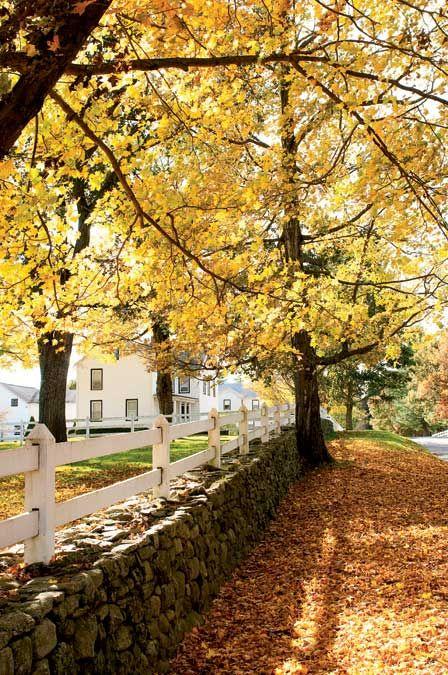 Fall Comes to Connecticut's Litchfield Hills-Arethusa Farm, Litchfield. Yankee Magazine.