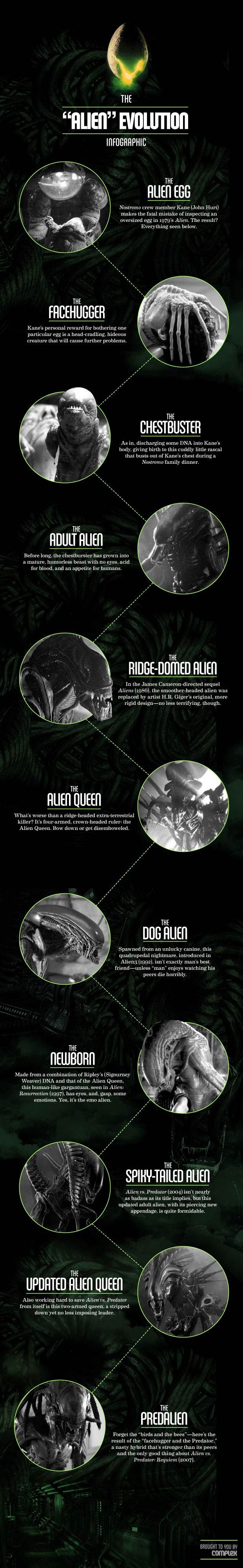 "The ""Alien"" Evolution Infographic #saturdayknowledge #movies #scifi"