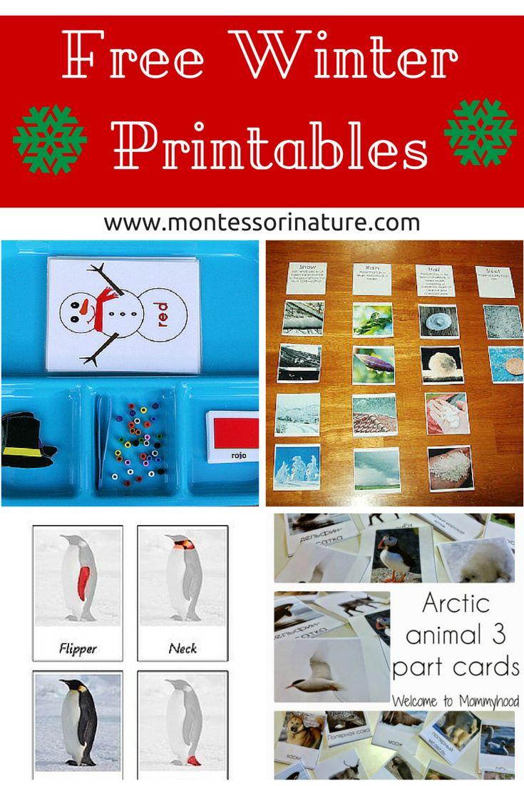 Free Winter Printables for Kids via Montessori Nature
