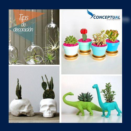 ¿Te gusta generar espacios relajantes y naturales en tu casa?  Hoy te presentamos algunas opciones creativas de macetas que pueden darle un toque diferente a tus espacios para que generes diversos ambientes.