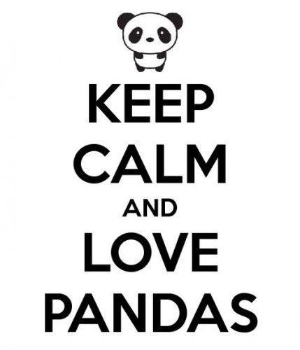 Love Pandas Keep Calm Quote