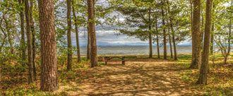 New York State Campsite Photo Database