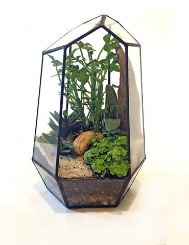 twigterrariums | Moss Terrariums & Other Small Worlds