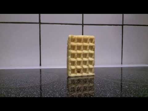 BEHOLD in all its greatness. | There's A Video Of A Waffle Falling Over