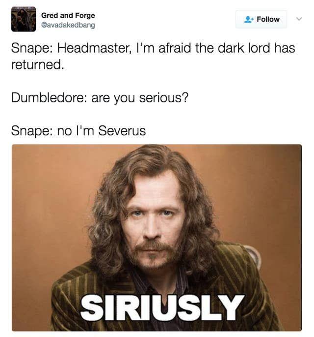 100 Harry Potter Memes That Will Always Make You Laugh First Harry Potter Harry Potter Memes Harry Potter Jokes