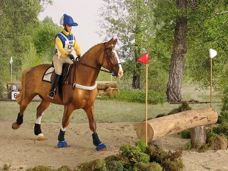by Andrea Robbins English Cross Country -