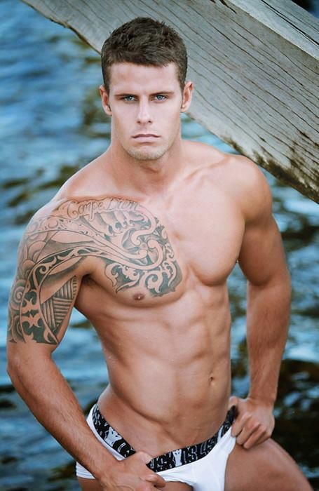 gay muscle sec