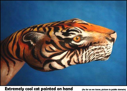 Very Cool Cat Body Paint On Hand: Paintings Art, Hands Paintings, Art Paintings, Animal Paintings, Body Paintings, Body Art, Handart, Bodyart, Hands Art