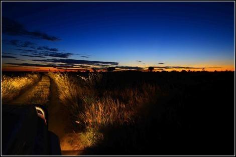 Sentraal-Kalahari | Na die middel van die mooiste woestyn. Die Sentraal-Kalahari-wildreservaat is nie so ver van jou af nie, maar dis een van die mees afgeleë wildernisgebiede in Afrika. En ook een van die mooistes. Olof Bergh het vir agt dae die stadige lewe daar gaan lewe.