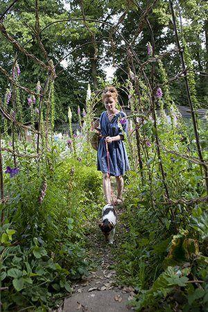 Alys on pollinators: Alys Fowler on pollinators
