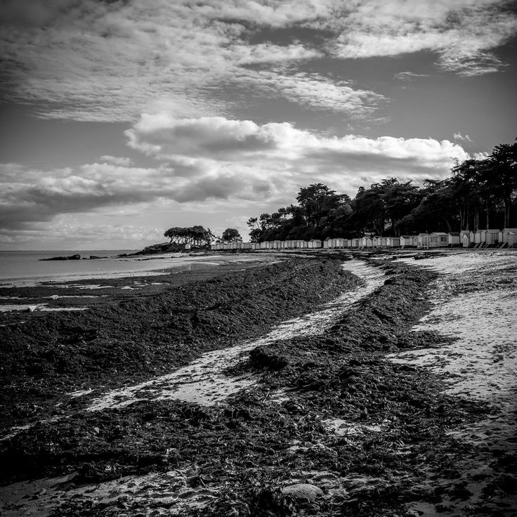 43 best Noirmoutier images on Pinterest I want, France and French