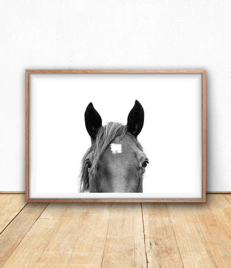 Horse Photography Print, Digital Download, Printable Wall Art, Black And White Animal Photo, Horse Eye, Equine Art Print, Large Horse Poster by SisiAndSeb on Etsy