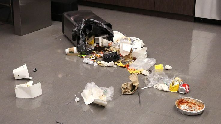 White House Staff Reminded To Place Lids Firmly On Trash Cans After Steve Bannon Gets Into Garbage Again - The Onion - America's Finest News Source