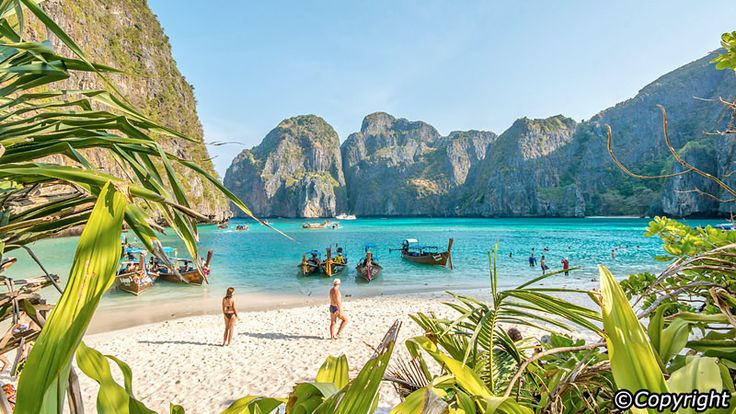 Explore The Beauty Of Caribbean: 25+ Best Ideas About Phi Phi Island On Pinterest