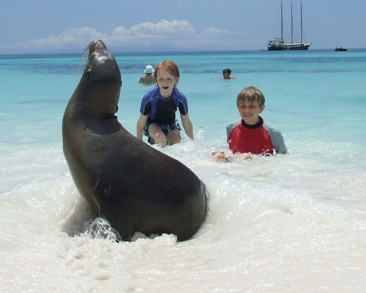 Pin the Galapagos Islands and Quasar Expeditions' Cruises to share with your friends