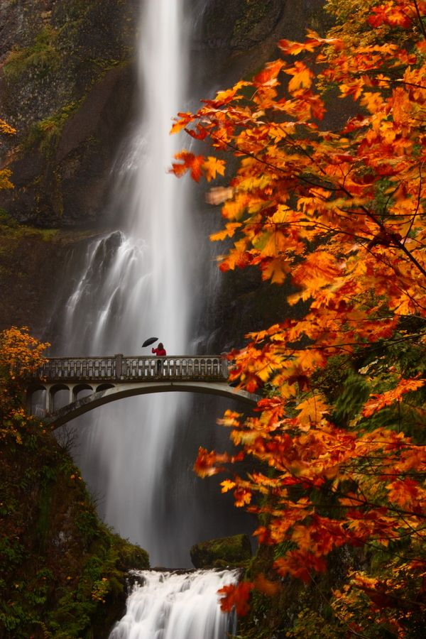 Multnomah Falls, Columbia River Gorge, Oregon I don't know if I could walk out on that bridge!