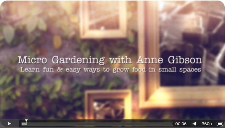 VIDEO: LEARN TO GROW AN ORGANIC EDIBLE GARDEN IN SMALL SPACES. Want to improve your health & well being? Nutrient-dense home grown organic food IS within reach, even if you only have a small space & budget to grow. Using smart design principles, sustainable gardening practices & NO chemicals, you CAN enjoy an abundance of food year round. Get started with easy tutorials & inspiring ideas. Learn more @ http://themicrogardener.com + CLAIM YOUR FREE eBOOK!