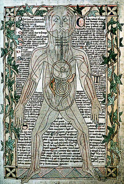 Medieval Doctors Book Showing The Anatomy of the Human Body
