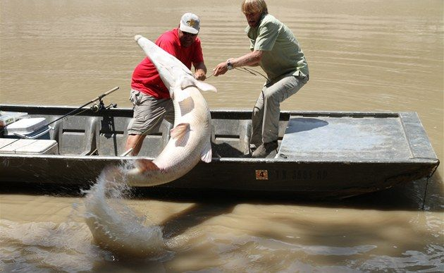 Jakub Vágner, fishing in Texas