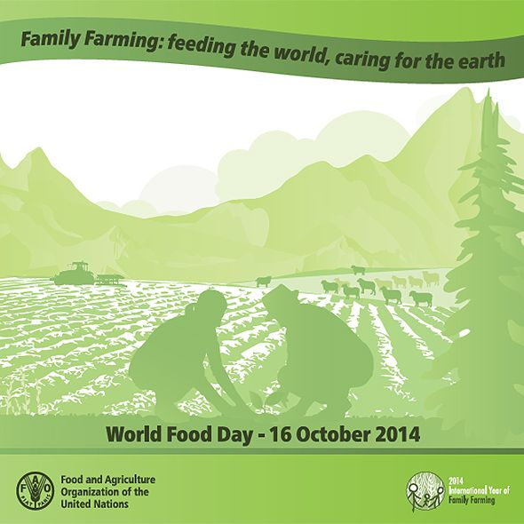 To Celebrate #WorldFoodDay, we are sharing stories from family farming in Canada #IYFF14 #WFD2014 #AgMoreThanEver http://ow.ly/Crh9M