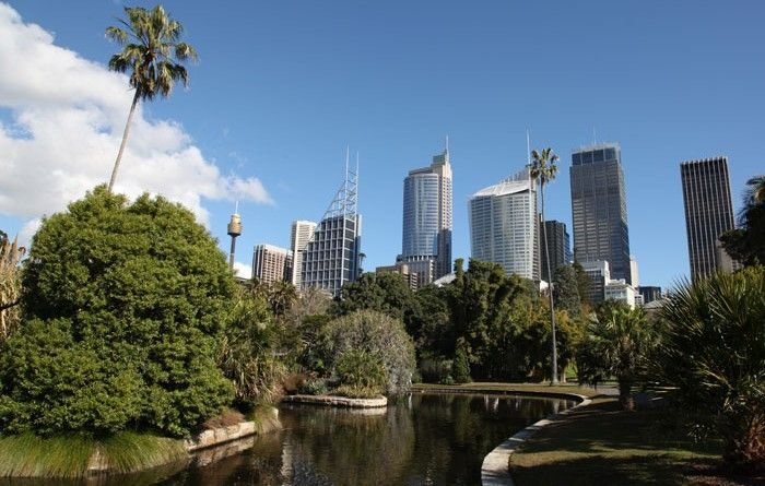 View from the Botanical Gardens, Sydney Visit us on http://mosmanfamilychiropractic.com.au/