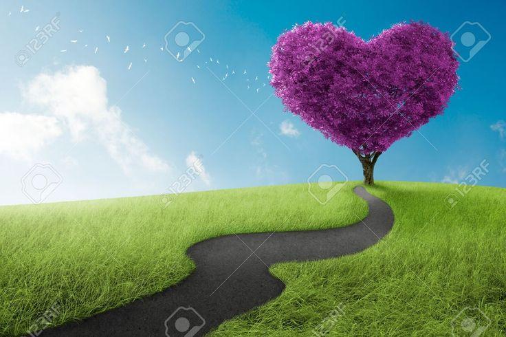 Risultati immagini per srdce z lásky