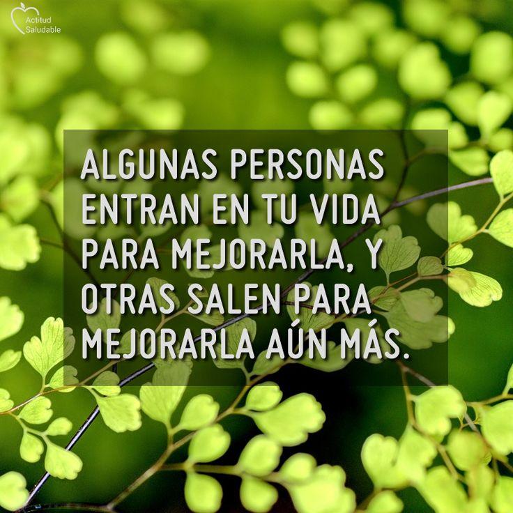 #actitudpositiva     #frasedeldia #actitudsaludable  #pensamiento