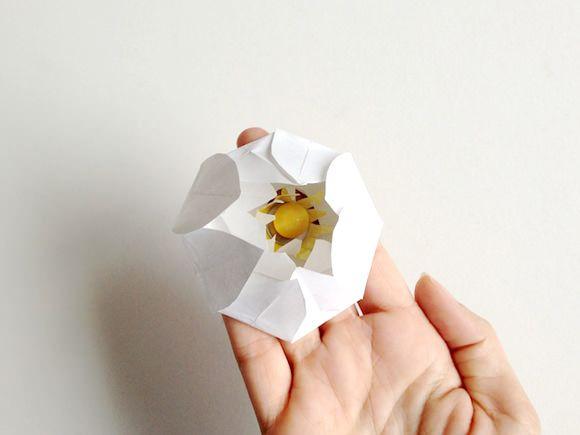 DIY: Magic Water Lilies - Coolest kids  DIY craft ever!