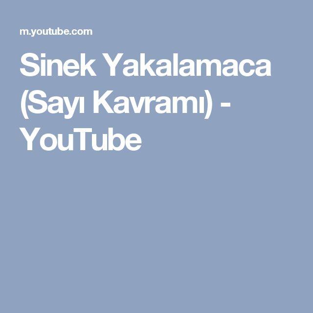 Sinek Yakalamaca (Sayı Kavramı) - YouTube