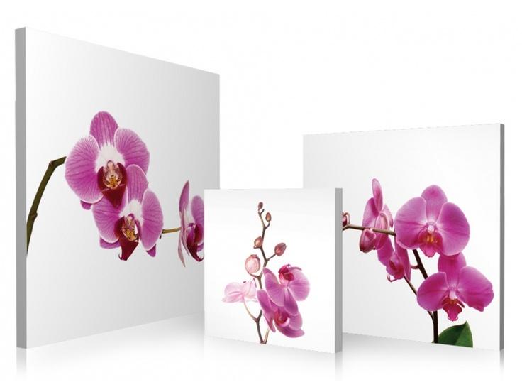 Triptyque ORCHIDEES 150*50cm