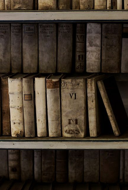 LIBRARY – VINTAGE BOOKS – I love old books. In the not too distant future, all books will be antiques.