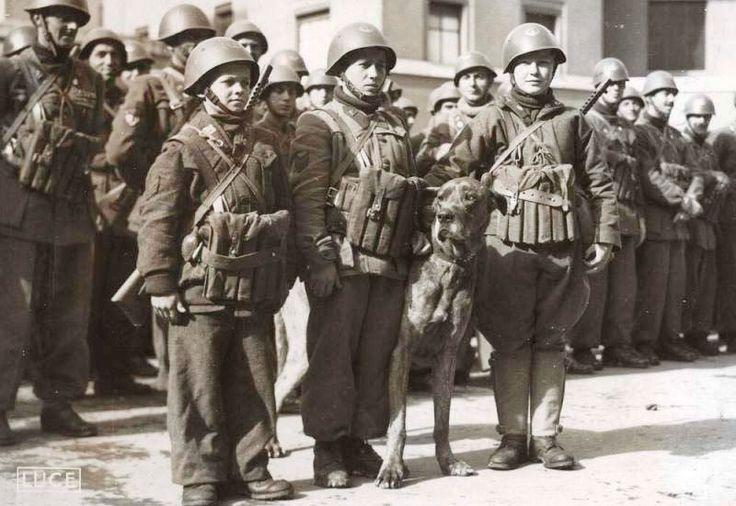 Battaglione lupo 1944 - Xª Flottiglia MAS (Repubblica Sociale Italiana) - Wikipedia