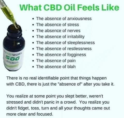 CBD Oil vs. Hempseed Oil: What's the ...