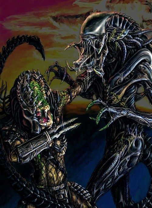 7 best images about [AvP] Predalien on Pinterest ...