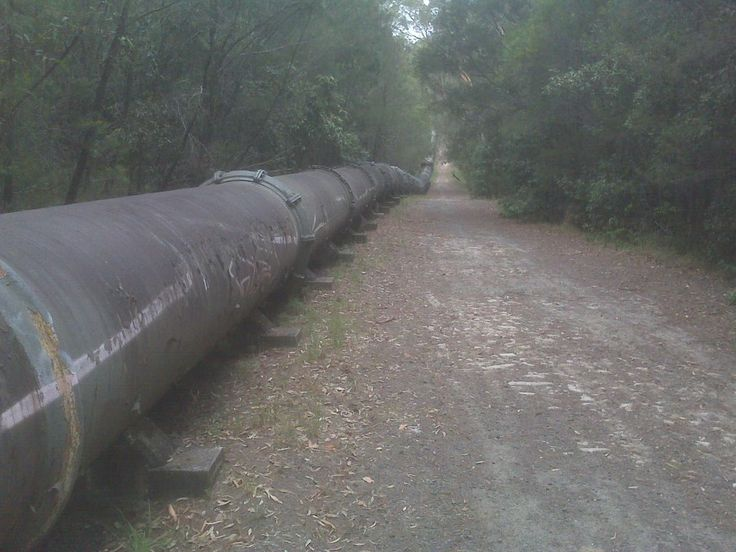 Woronora Pipeline looking towards Woronora - following this track every weekend