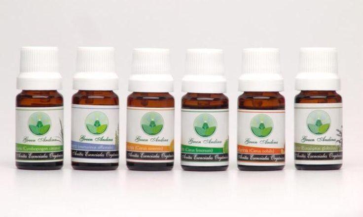 Los aceites esenciales brindan beneficios terapéuticos, aumentan el bienestar, restauran el equilibrio y revitalizan la mente, el cuerpo y el espíritu. Presentación 10 ml