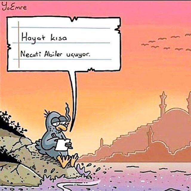 �� ��şair kuş ���� NECATİ ABİİİİ ;)) . Hep MAvİ'deyim...�� . ������ . #günaydin #mizah #yunusemregündüz #karikatürist #kahkaha #şair #kuş ☺️�� #hayatkısakuşlaruçuyor #cemalsüreya #gülmece #karikatürhane �� #günün #eğlencesi #necatişaşmaz #necatiabi ����♂️#gülümse #balım  #mavi #aşk #beklemede #temamm  #hepmavideyim �� #nilmavisi #mavimmmmm �� #istanbul #nil #izmir �� #felan �� http://turkrazzi.com/ipost/1521661577210695535/?code=BUeByRyAQ9v