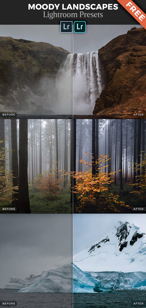 Free Download Of 7 Lightroom Presets For Dark And Moody Landscape Photography Moody Days Foggy Forest Autumn Colors Glacier Blues